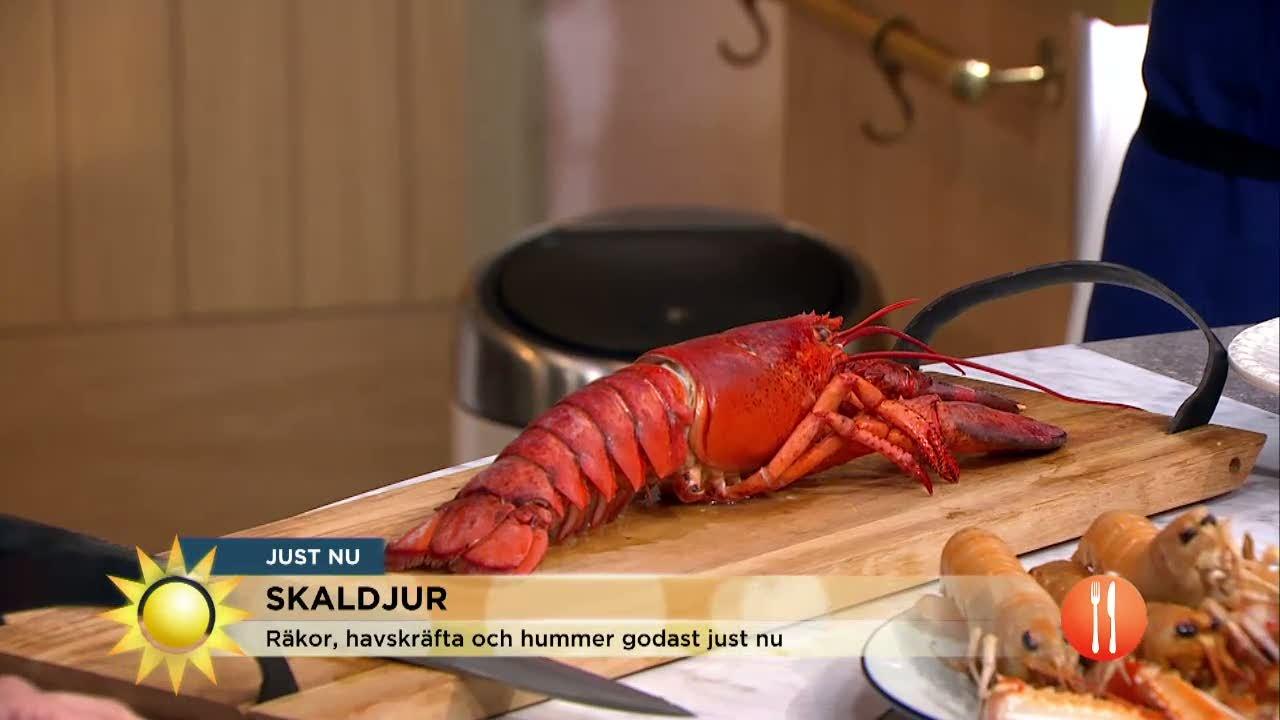 Så lagar du skaldjur som Myllymäki