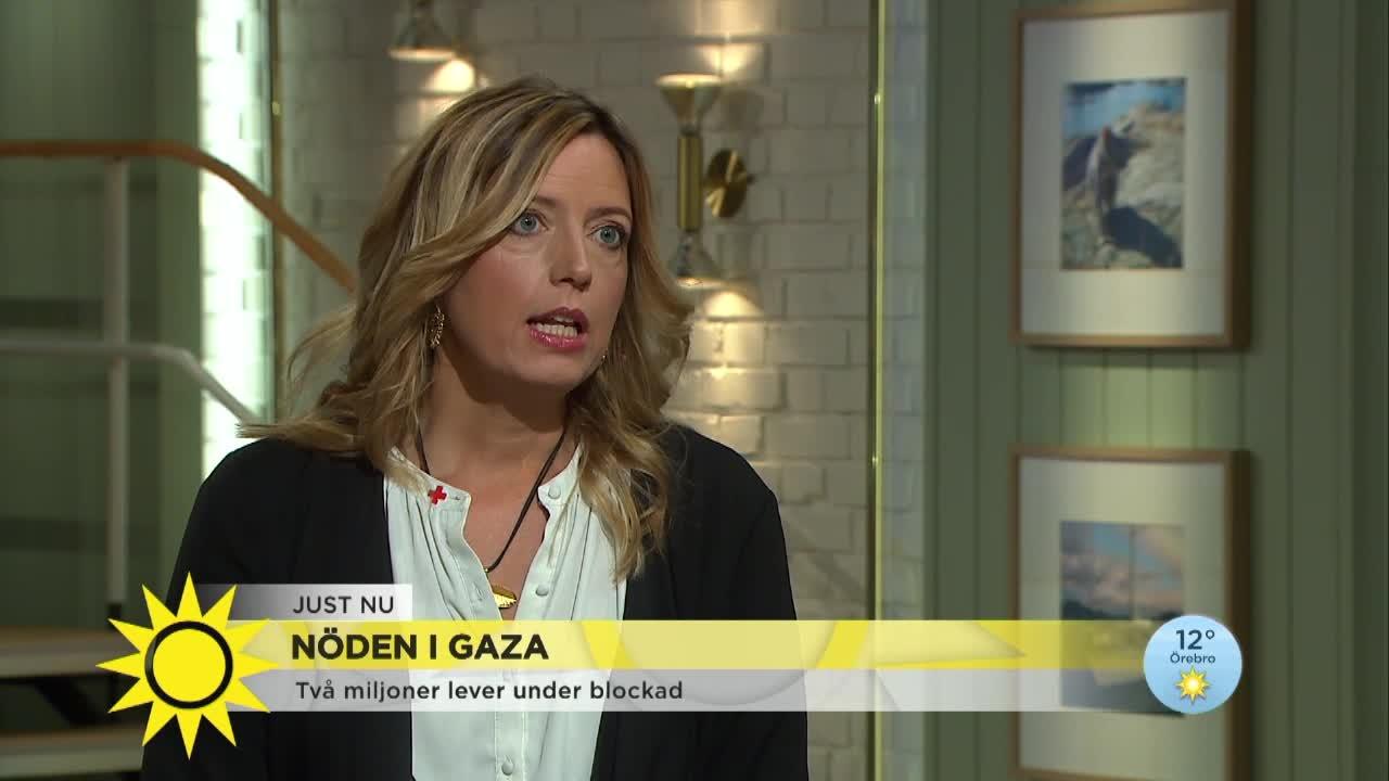 Svenska miljoner till gaza