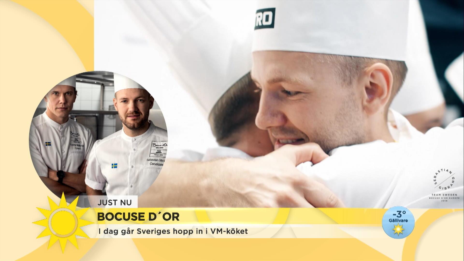 """Sverige i Bocuse d'Or: """"Det viktigaste är smak, smak och smak"""""""