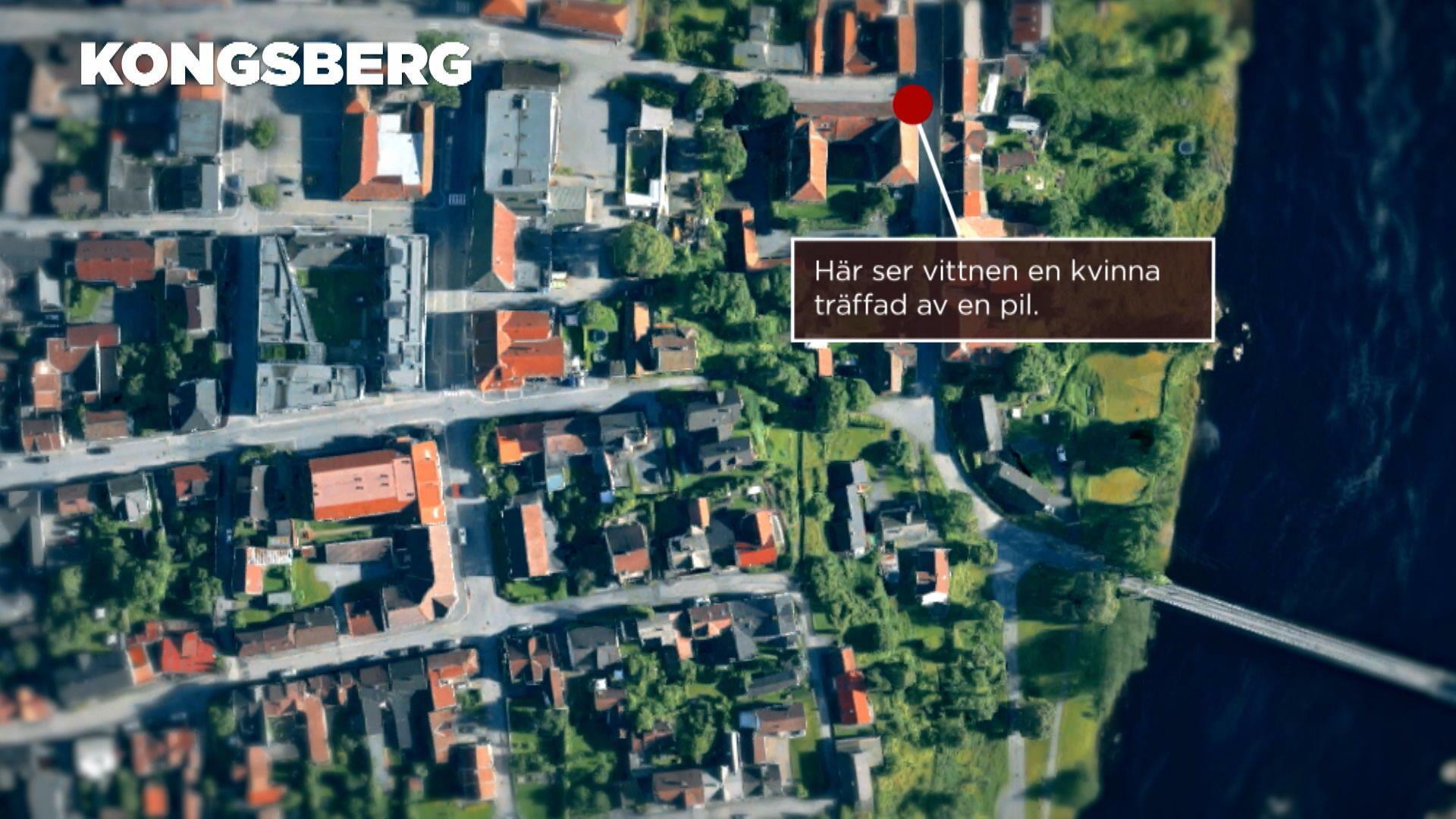 Det här vet vi om pilbågsattacken i Kongsberg